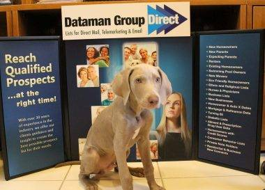 Dez is part of the Dataman Group display